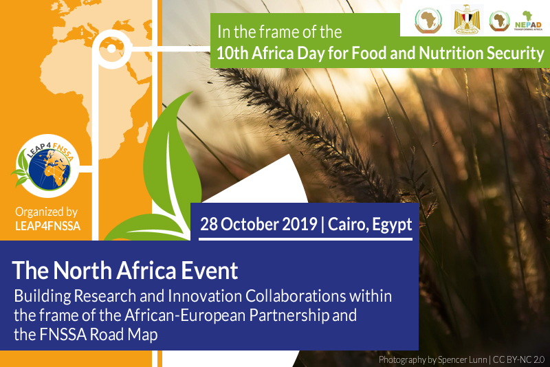 The North Africa Event | 10th Africa Food and Nutrition Security Day Egypt 2019