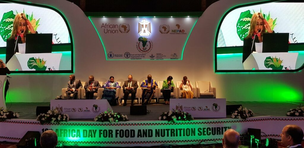 10th Africa Food Day in Cairo ICARDA interviews