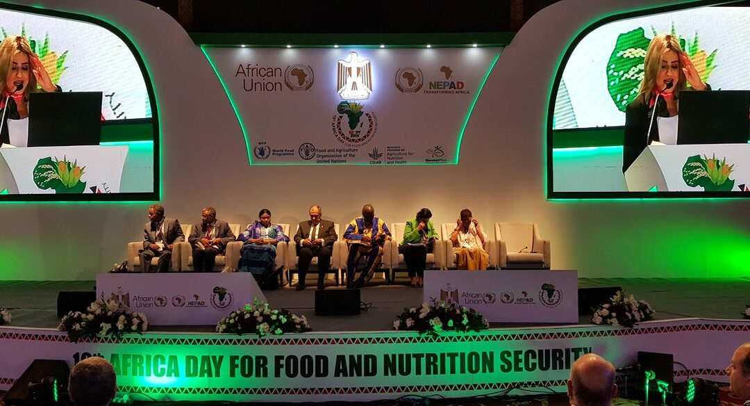 10th African Day for Food and Nutrition Security: video interviews