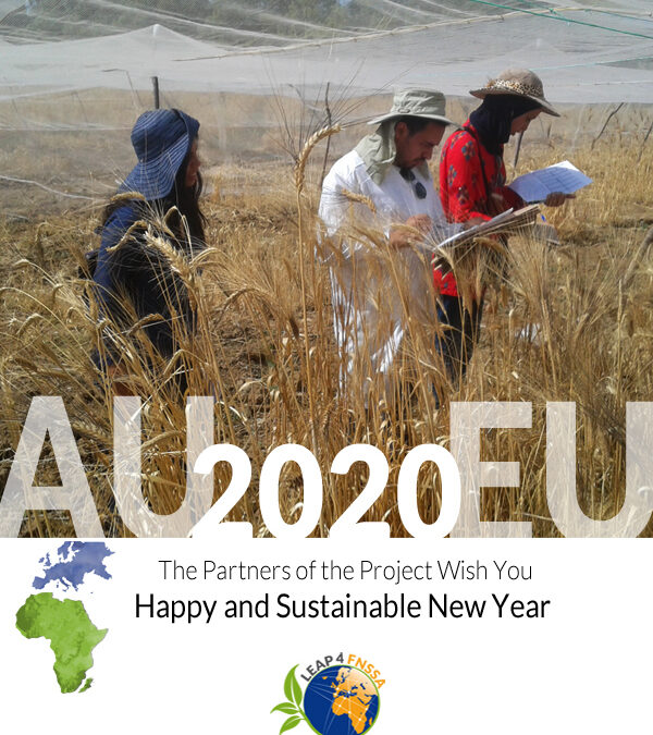 Happy and Sustainable New Year!