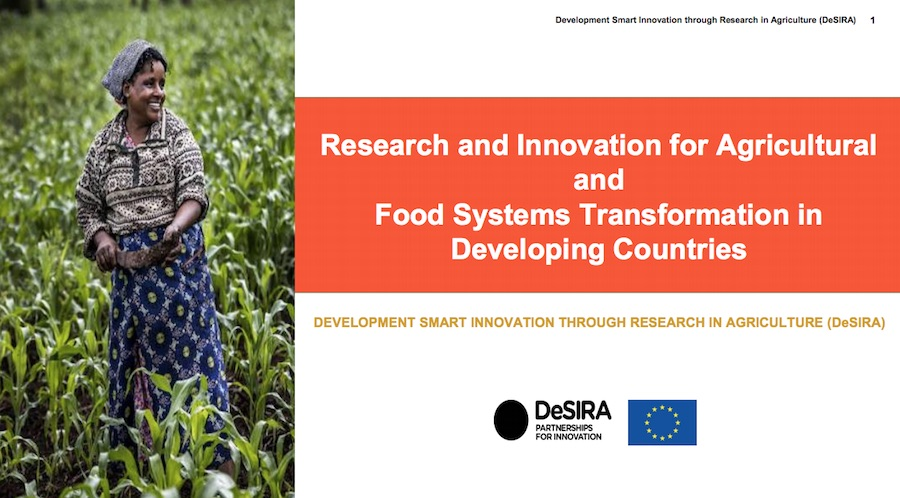 The second issue of the Newsletter about DeSIRA initiative is online!