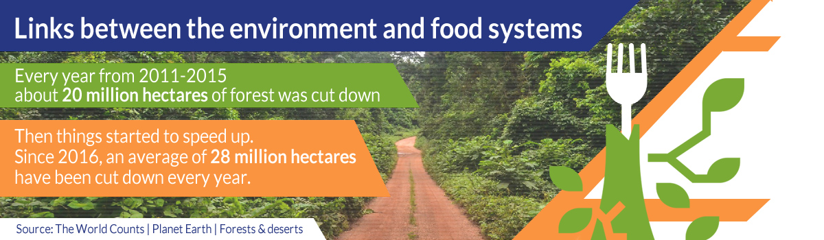 Links between the environment and food systems