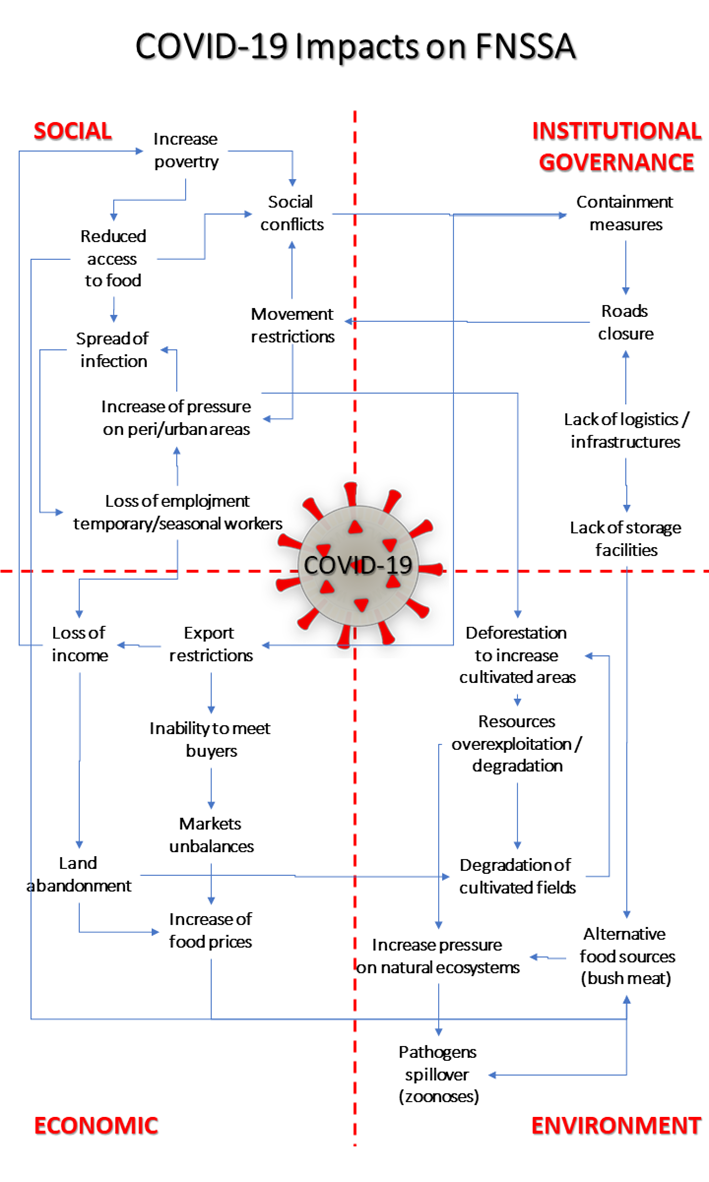 Conceptual map depicting impacts of COVID-19 on the whole sustainability of the agri-food sector