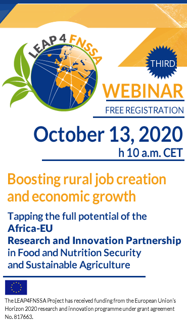 Boosting rural job creation and economic growth | webinar