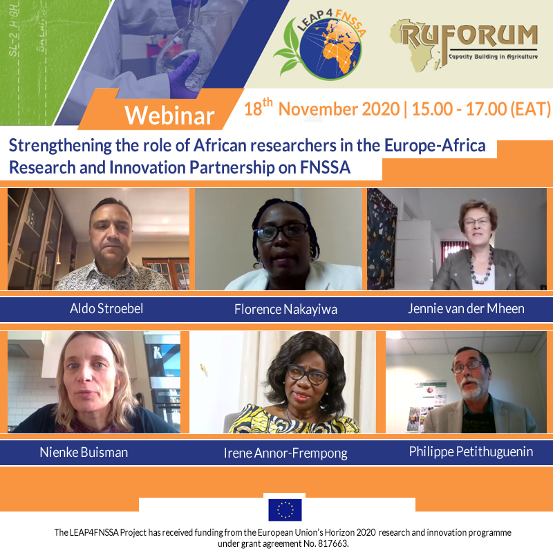 Strengthening the role of African researchers in the Europe-Africa Research and Innovation Partnership on FNSSA | brief report