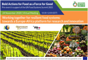 Working together for resilient food systems: towards a Europe-Africa platform for research and innovation