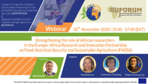 Strengthening the role of African researchers in the Europe-Africa Research and Innovation Partnership on FNSSA | webinar
