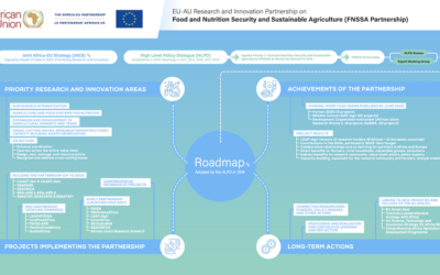 The FNSSA Partnership Roadmap | Infographic