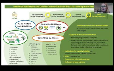 #3 Virtual West Africa-EU Alliance Workshop (WAEA)