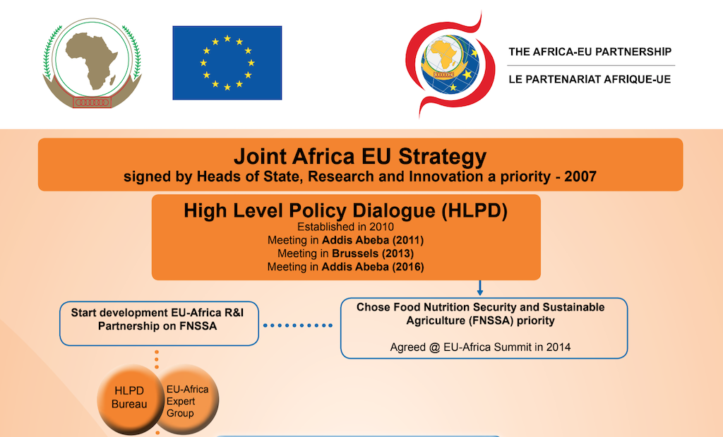 Joint Africa EU strategy