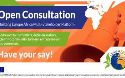 Building Europe-Africa Multi-Stakeholder Platform | Open consultation