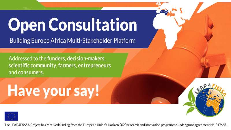 Building Europe-Africa Multi-Stakeholder Platform | Open consultation