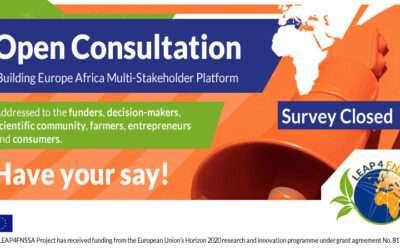 Building Europe-Africa Multi-Stakeholder Platform | Open consultation closed
