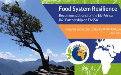 Food System Resilience | Study Report