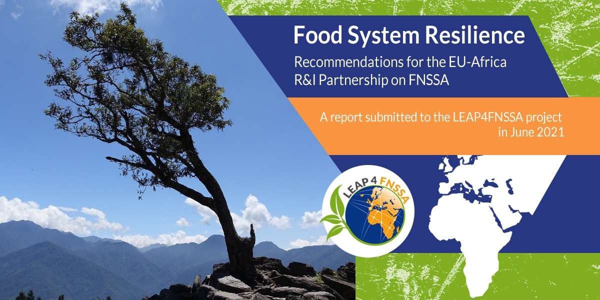 Food System Resilience   Study
