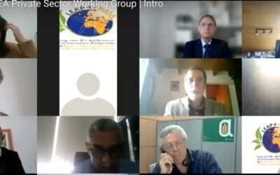 The NAEA Private Sector Working Group | Full recording